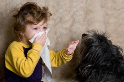 Аллергический ринит у ребенка: провоцирующие факторы, характерные проявления и методы лечения
