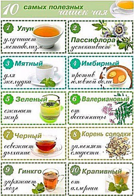 Какой чай пить при беременности: полезные травы и чайные сорта, противопоказания и показания к употреблению, рекомендованная доза напитка