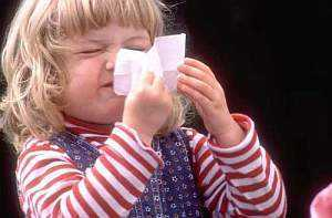 Аллергический насморк: симптомы, эффективные методы лечения