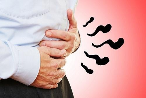 Амёбиаз: что это такое, как происходит заражение, специфические симптомы и методы лечения