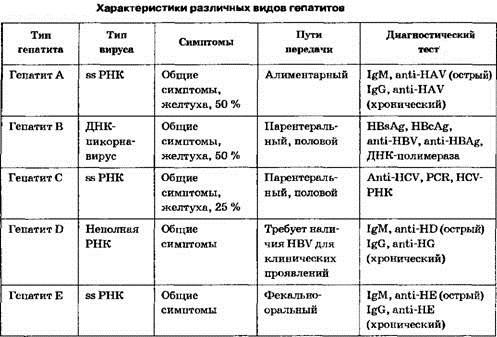 Анализы для диагностики гепатита: перечень исследований, особенности подготовки, расшифровка результатов