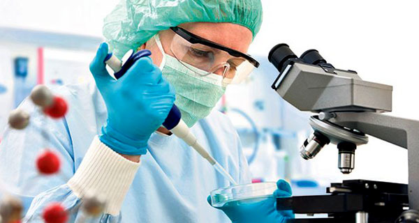 Анализы на герпес: основные виды, особенности процедур, нормы и отклонения