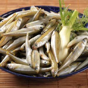Анчоусы: влияние на организм и полезные свойства рыбы, формы заготовления и простые рецепты
