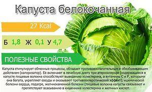 Белокочанная капуста: полезные свойства и противопоказания, сферы применения овоща