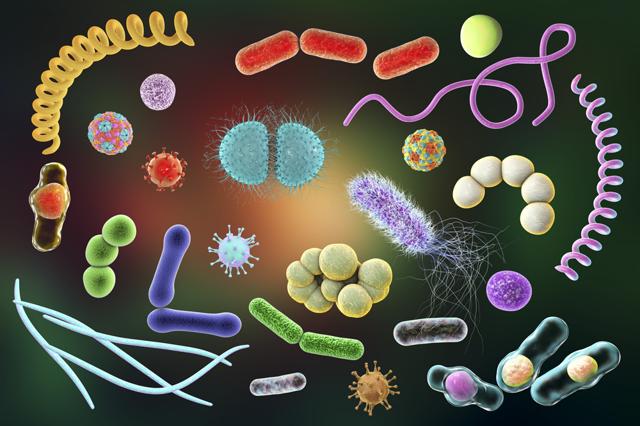 Чем можно заразиться в общественных местах: как передаются венерические и инфекционные, кожные заболевания