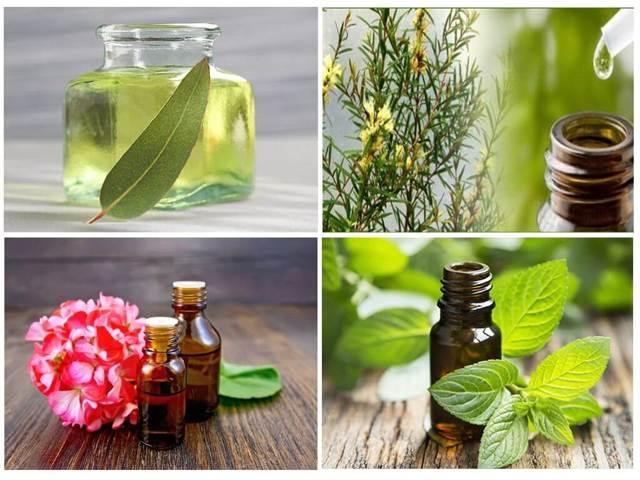 Эфирные масла от комаров: средства для детей и список натуральных репеллентов