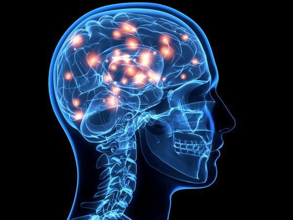 Энцефалиты (воспаление мозга): как проявляется, методы лечения и причины