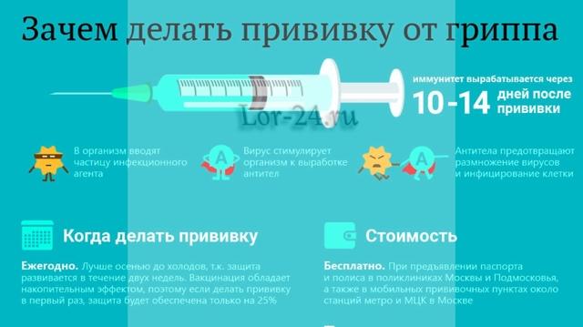 Эпидемия гриппа в 2019 году: насколько страшный и опасный вирус может быть