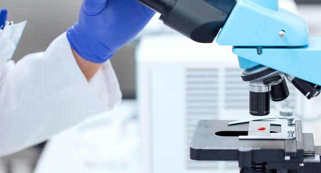 Фолиеводефицитная анемия: причины развития, клиническая картина, лечебные и профилактические мероприятия
