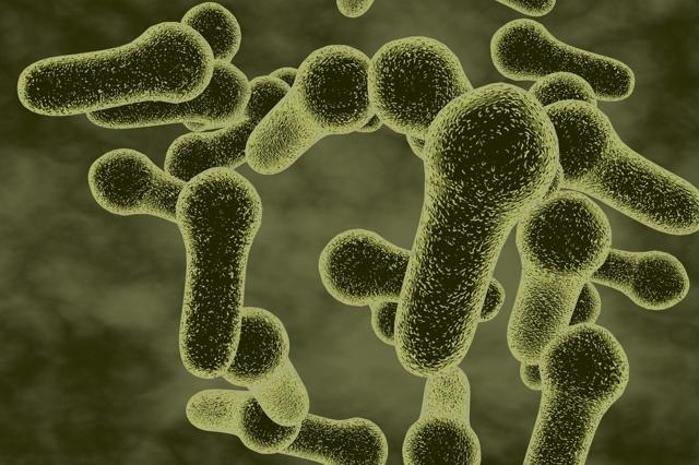 Газовая гангрена: этиология развития, характерные симптомы, диагностика и тактика лечения
