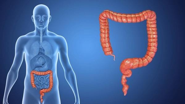 Ишемический колит кишечника: механизм развития, характерные симптомы, диагностика и тактика лечения