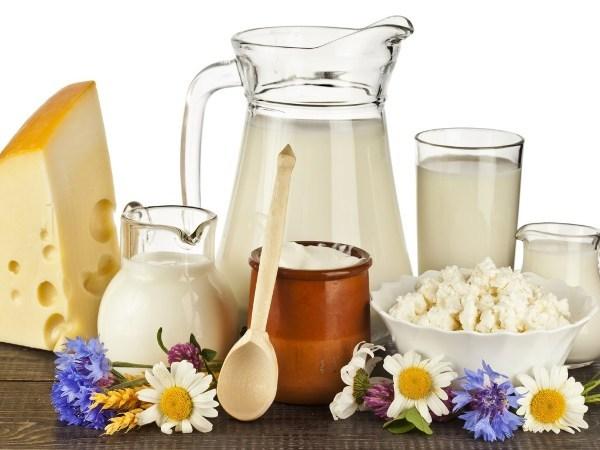 Какой диеты придерживаться при фосфатных камнях в почках: главные принципы питания, рекомендуемая пища, ограничения в рационе