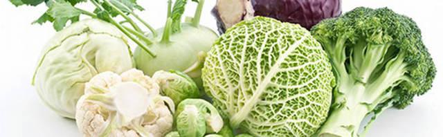 Капуста при грудном вскармливании: польза и вред, правила введения в рацион, разновидности блюд