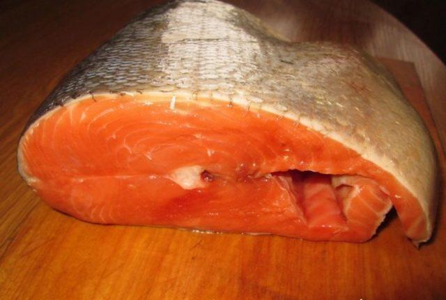 Рыба кета польза и вред для организма