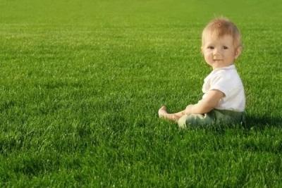 Купание ребенка в травах: польза и вред для организма, лучшие рецепты, правила безопасности