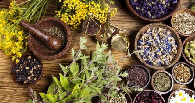 Лечение псориаза в домашних условиях: эффективные рецепты традиционной и народной медицины