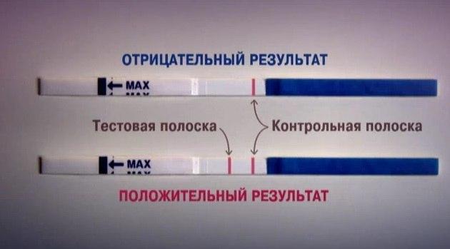 Методы определения овуляции: тесты, анализы и обследования для выявления