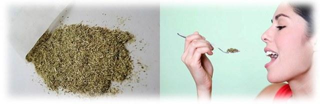 Народные средства от глистов: как принимать полынь, цветы пижмы, папоротника, семена тыквы