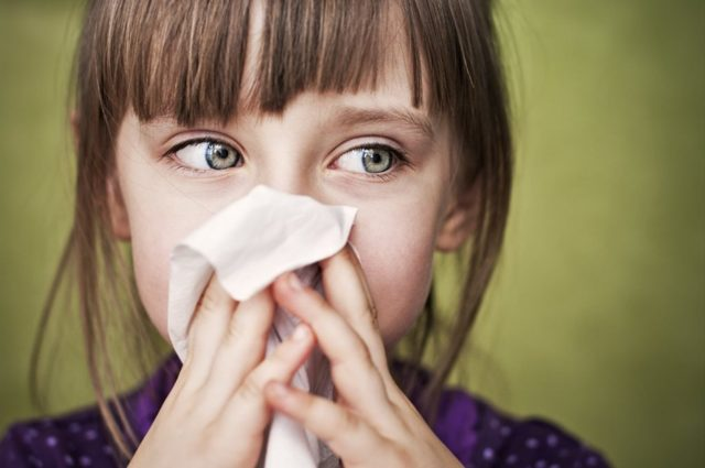 Насморк: лечение ринита в домашних условиях, народные методы и профилактика