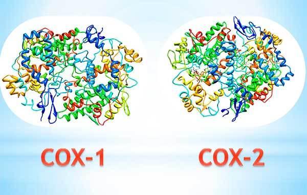 Оки раствор для полоскания: состав препарата, инструкция по применению – какие есть аналоги?