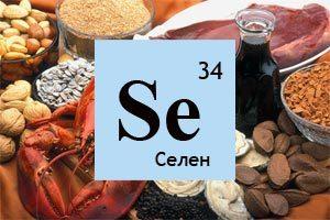 Основные функции селена в организме человека и в продуктах питания