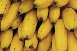 Польза и вред банана: состав, пищевая ценность, применение в лекарственных целях