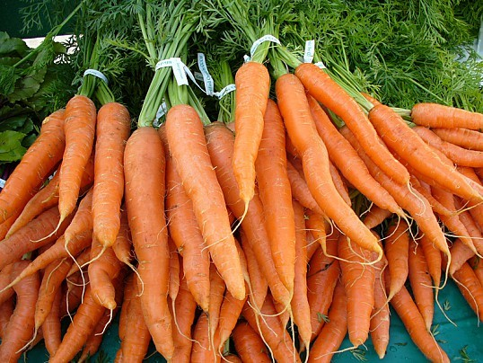 Польза и вред моркови для организма человека, нормы потребления, как правильно выбрать и хранить продукт
