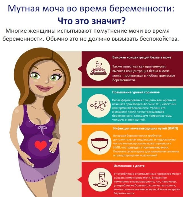 Причины мутной мочи у женщин, мужчин, детей, беременных и эффективные методы лечения в домашних условиях