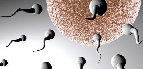 Причины появления азооспермии и диагностика заболевания, народные и лекарственные способы лечения
