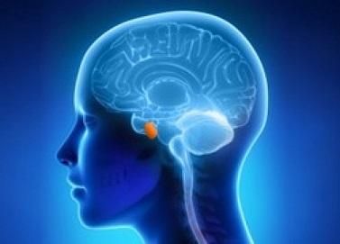 Пролактинома гипофиза: факторы риска развития, сопутствующие симптомы, тактика лечения, прогноз для жизни