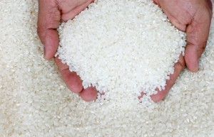 Рис: польза и вред, пищевая ценность, применение в народной медицине и косметологии, рецепты приготовления