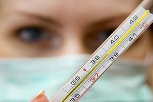 С чего начать диагностику дирофиляриоза?
