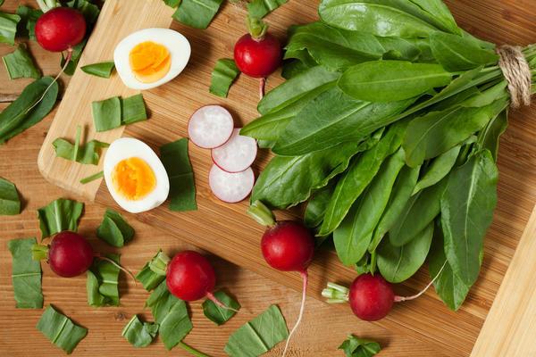 Щавель — полезные свойства, состав и пищевая ценность, способы приготовления, вред для организма