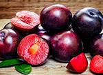 Шелковица: состав и полезные свойства, возможные противопоказания, использование ягод для похудения