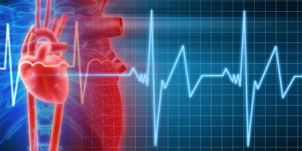 Симптомы и виды аритмии сердца, эффективные методы терапии народными средствами
