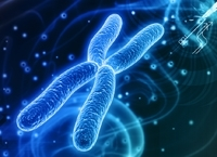 Синдром Шерешевского-Тернера: провоцирующие факторы, тип наследования, основные симптомы, поддерживающее лечение