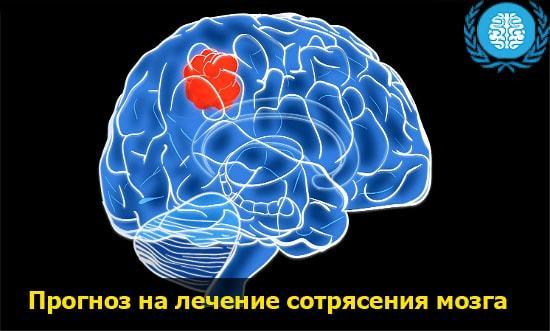 Сотрясение головного мозга: симптомы и лечение, как оказать первую помощь?