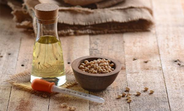 Соя: польза и вред для организма, рекомендуемые нормы и противопоказания к употреблению