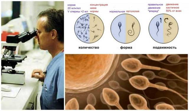 Свинка и бесплодие: что такое паротит, возможные осложнения при неправильном лечении заболевания, как повысить шансы на зачатие