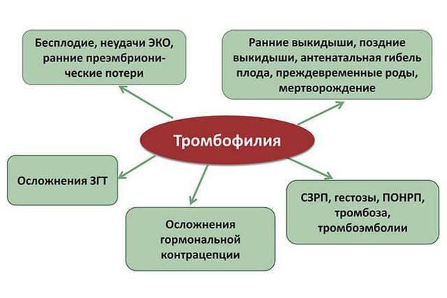 Тромбофилия: факторы риска, клиническая картина, особенности лечения, осложнения при беременности
