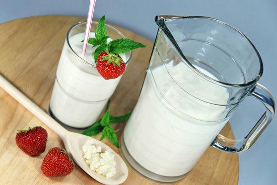 В чем заключается польза молочного гриба, есть ли вред от употребления продукта?