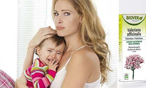 Валерьянка при грудном вскармливании: плюсы и минусы, рекомендации по применению, побочные эффекты и меры безопасности