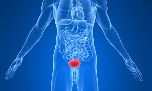 Везикулит: симптомы, диагностика острой и хронической формы заболевания, методы лечения