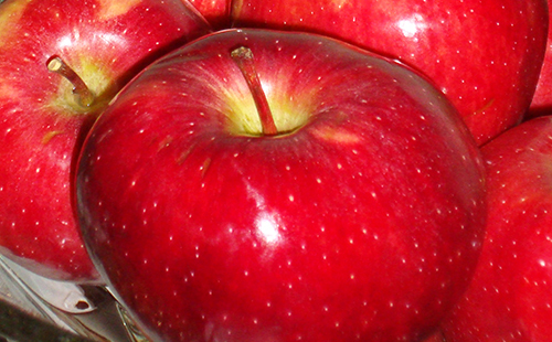Яблоки при грудном вскармливании: как правильно готовить печеные зеленые фрукты