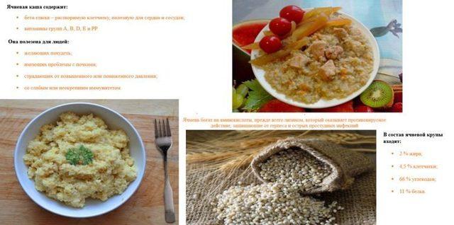 Ячневая крупа: польза и вред, пищевая ценность, из какого злака ячка, способы приготовления