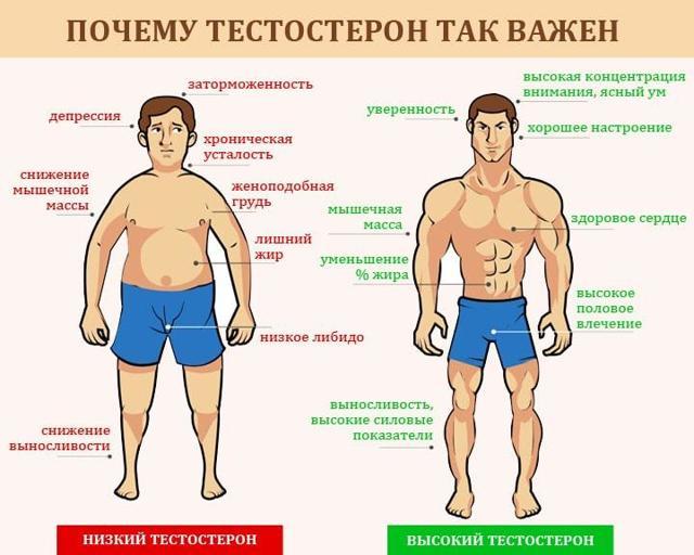 Заместительная гормональная терапия у мужчин: препараты тестостерона, показания и противопоказания к применению
