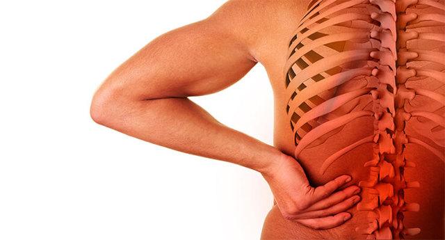 Адамово яблоко - рецепты приготовления и способы лечения для суставов: правила приготовления лечебной мази, эффективность, отзывы пациентов и мнение специалистов
