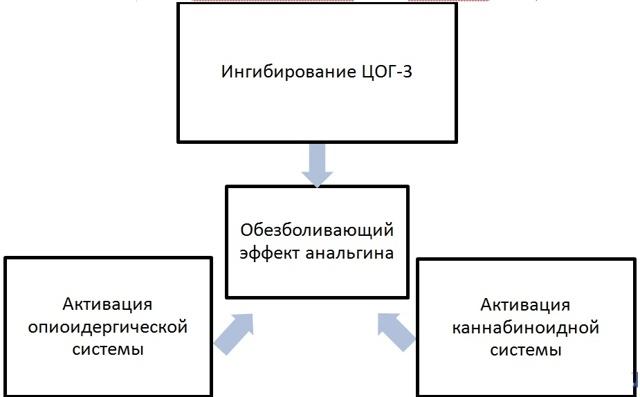 Анальгин: от чего помогает, инструкция по применению, механизм действия, показания и противопоказания, аналоги, цены и отзывы