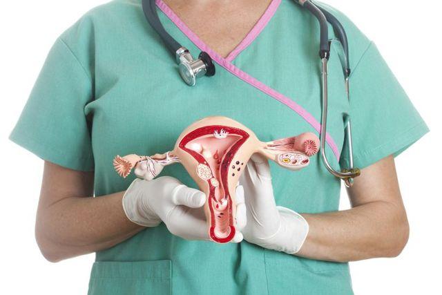 Может ли матка увеличиться перед менструацией