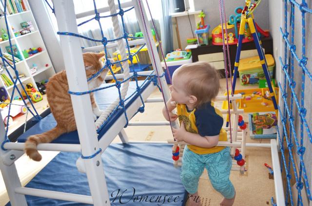 Развивающие игрушки для детей от 2 до 3 лет: обзор 12 лучших вариантов от детского психолога